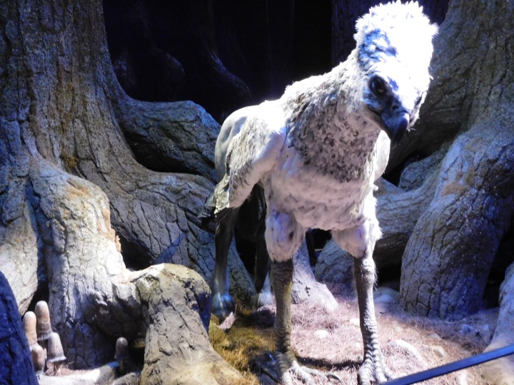 Harry Potter Studio Tour (164)