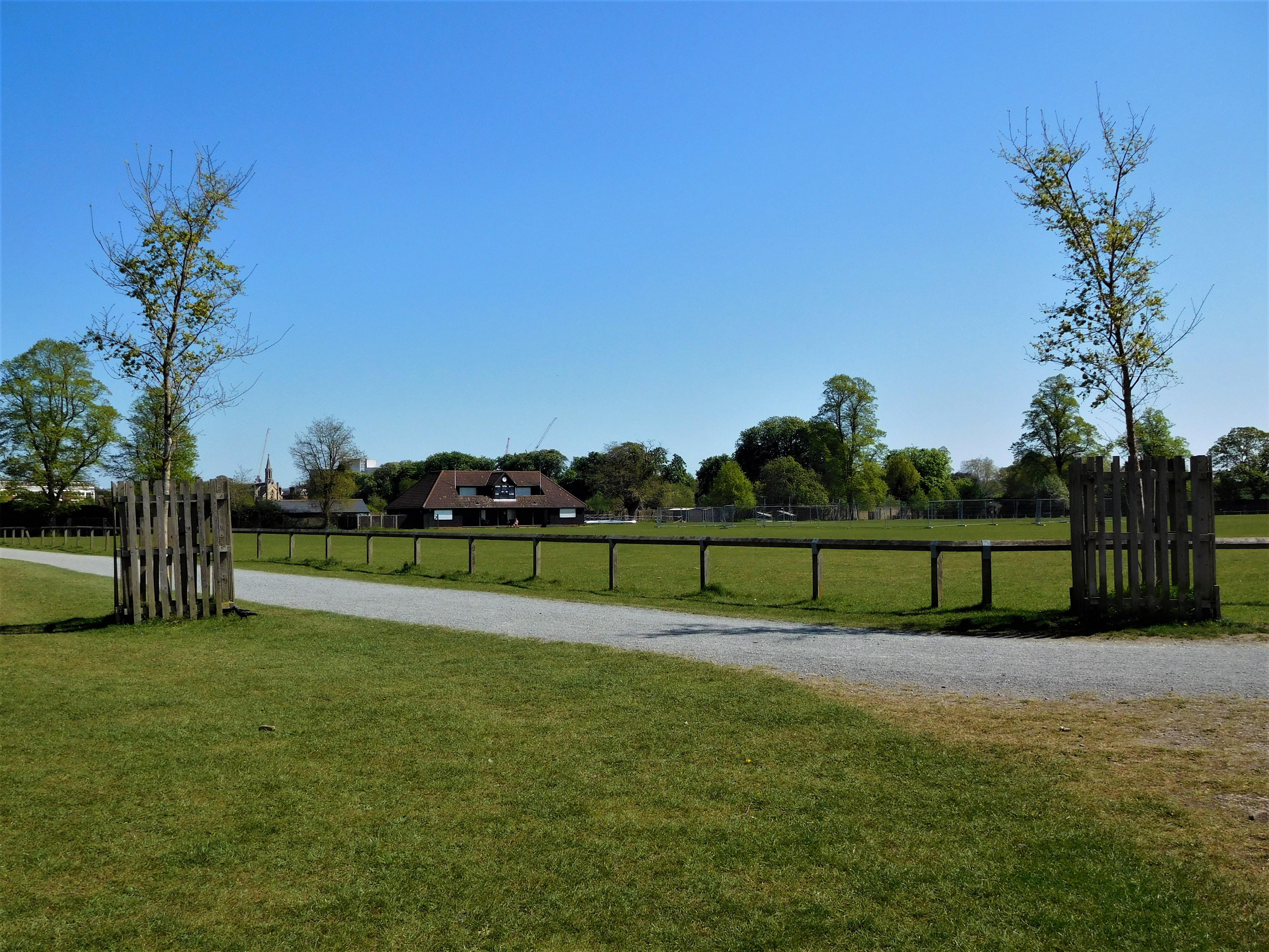 Bushy Park 3