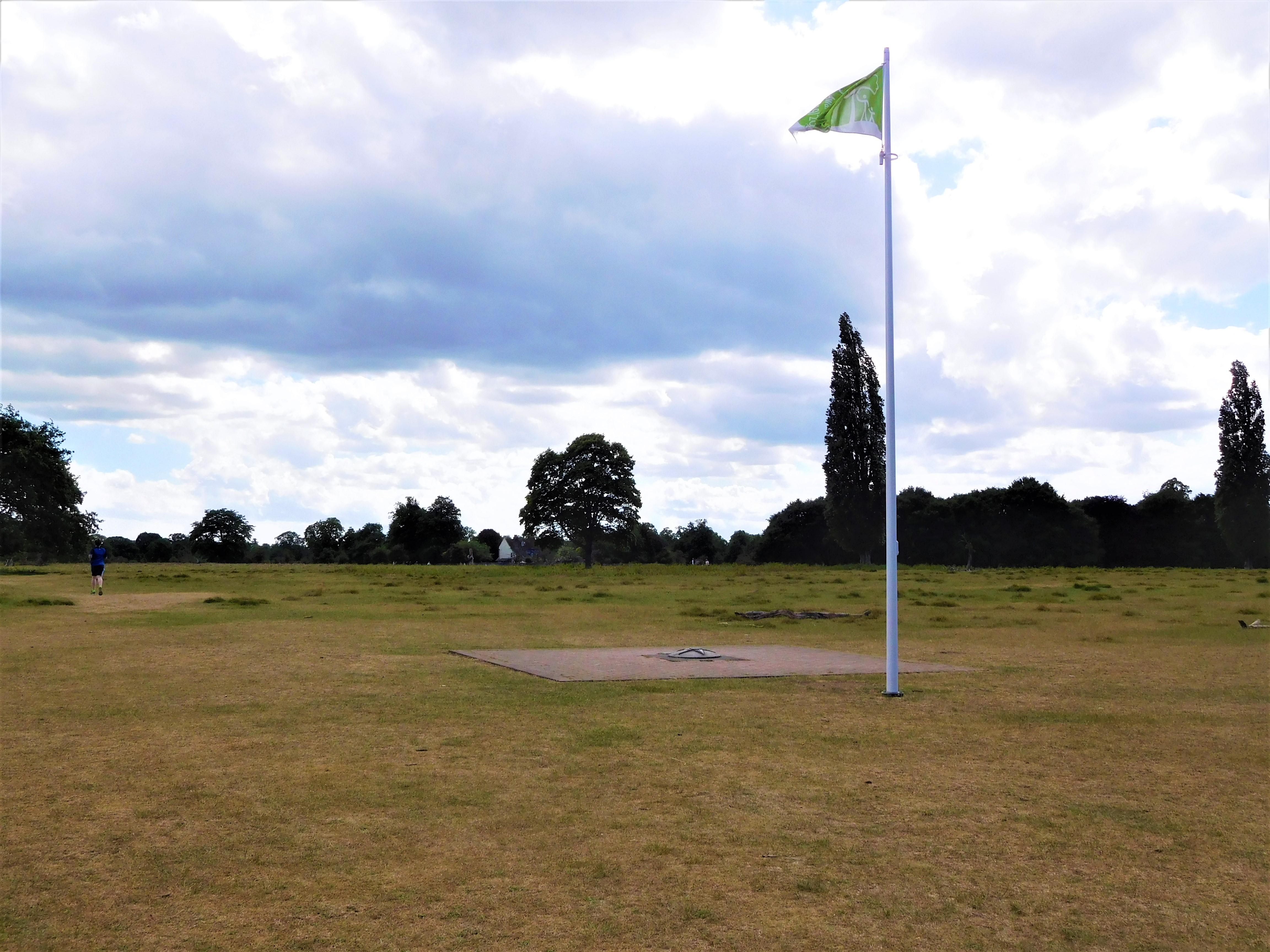 Bushy Park 9
